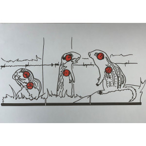 Gophers Paper Target - 10 Pack