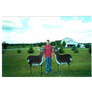 Life Size Animals-Deer 2 Pack-All*